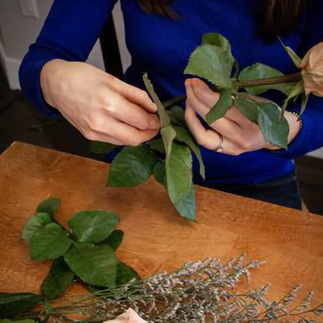 Unpacking Your Flowers Remove Foliage