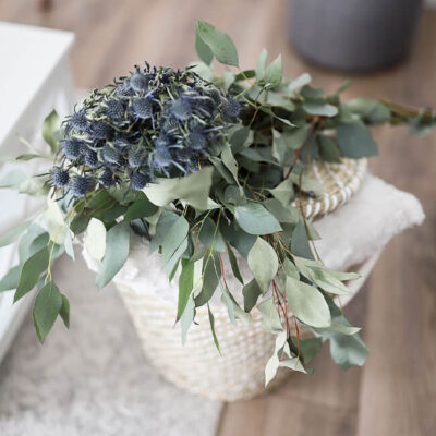 Eryngium Flower Delivery Vancouver