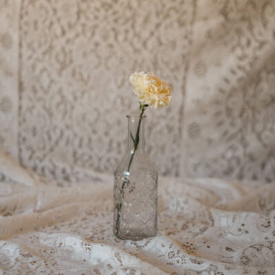 Pale Yellow Carnation Standard Flower Delivery