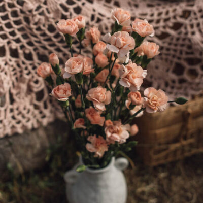 Peach Carnations Mini Flower Delivery Vancouver