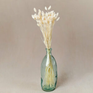 Phalaris Flower Delivery Vancouver