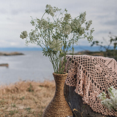Queen Annes Lace Flower Delivery Vancouver