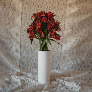 Red Alstromeria Flower Delivery Vancouver