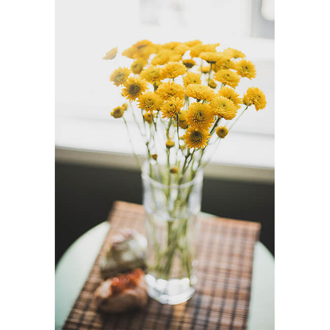 Yellow Pom Pom Mums Flower Delivery Vancouver