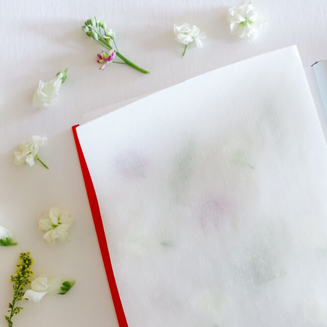 book with pressed flowers