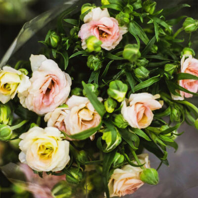 peach lisianthus Flower Delivery Vancouver