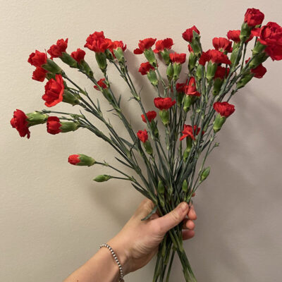 red mini carnations Flower Delivery Vancouver