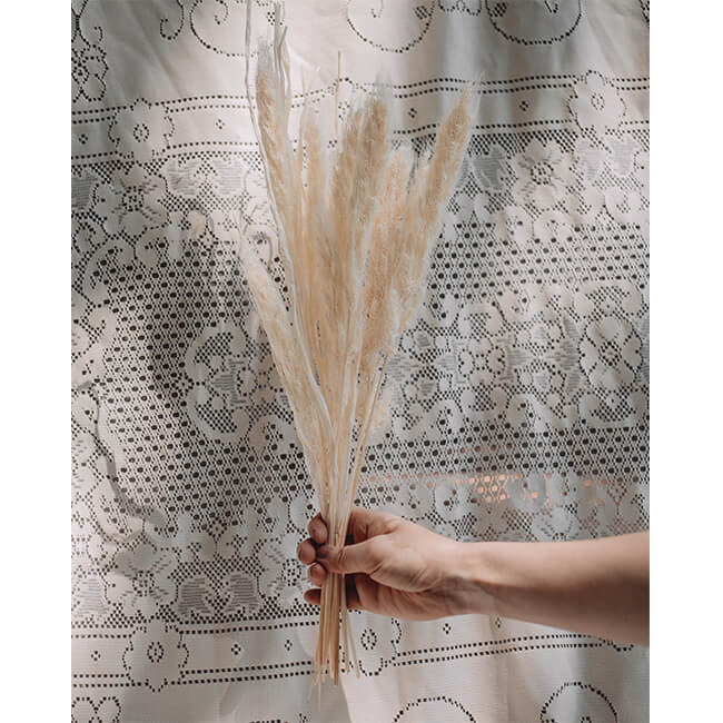 Foxtail Grass Flower Delivery Vancouver