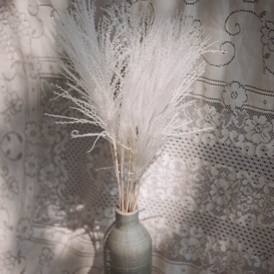 White Miscanthus Flower Delivery